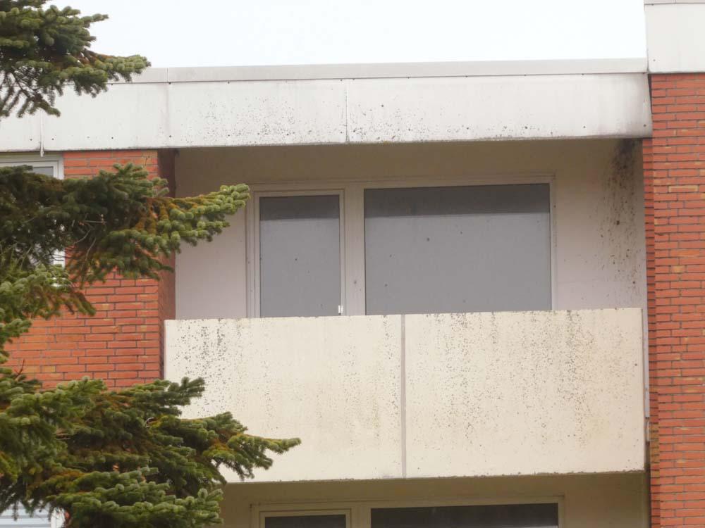 2-ZKB- Wohnung-kleiner-Geldbeutel-Brake-Ansicht