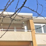 3-ZKB-Wohnung mit Logenplatz