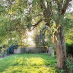 Charmante-Doppelhaushaelften-Brake-Garten