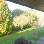 Ebenerdige-Wohnung-mit-Suedgarten-Brake-Sued-Garten
