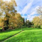 Einfamilienhaus-1313-qm-Grundstueck-Brake-Garten