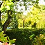 Einfamilienhaus-in-Brake-mit-viel-Wohnflaeche-und-grossem-Garten-1