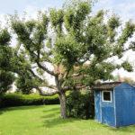 Einziehen-und-wohlfuehlen-in Brake-Garten