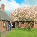 Haus-in-Oldenbrok-Gartenansicht