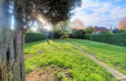 Kleines-Haus-grosse-Wirkung-Garten