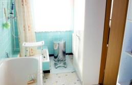 Mansardendachhaus-in-Brake-Badezimmer