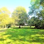 Resthof-in-Brake-mit-grossem-Grundstueck-Garten