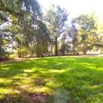 Resthof-in-Brake-mit-grossem-Grundstueck-Garten-2