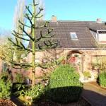 Schoene-Doppelhaushaelfte-mit-Garage-und-grossem-Garten-Wohnhaus