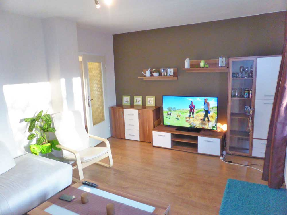 Stadtnahe-ruhige-Wohnung-in-Brake-Wohnzimmer