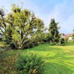 Stufenlos-gluecklich-Walmdachbungalow-Bremerhaven-Garten