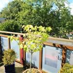 Tolles-Anwesen-in-Brake-Balkon
